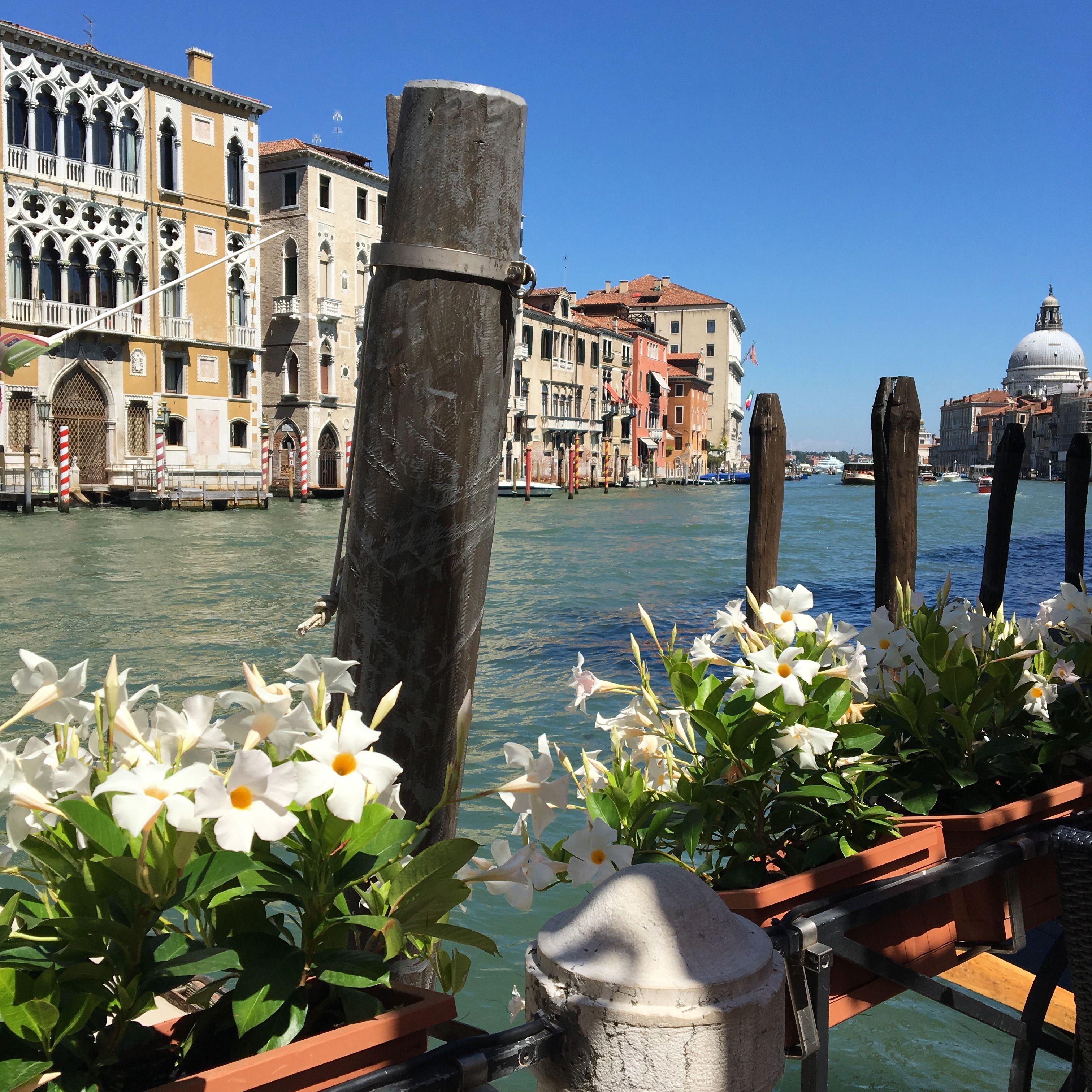 Venice IMG_9543