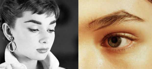 audrey-hepburn-eyebrow-shape