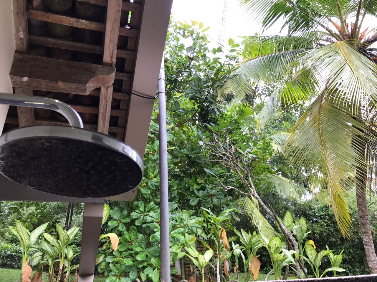 Outdoor shower - tropical modernism