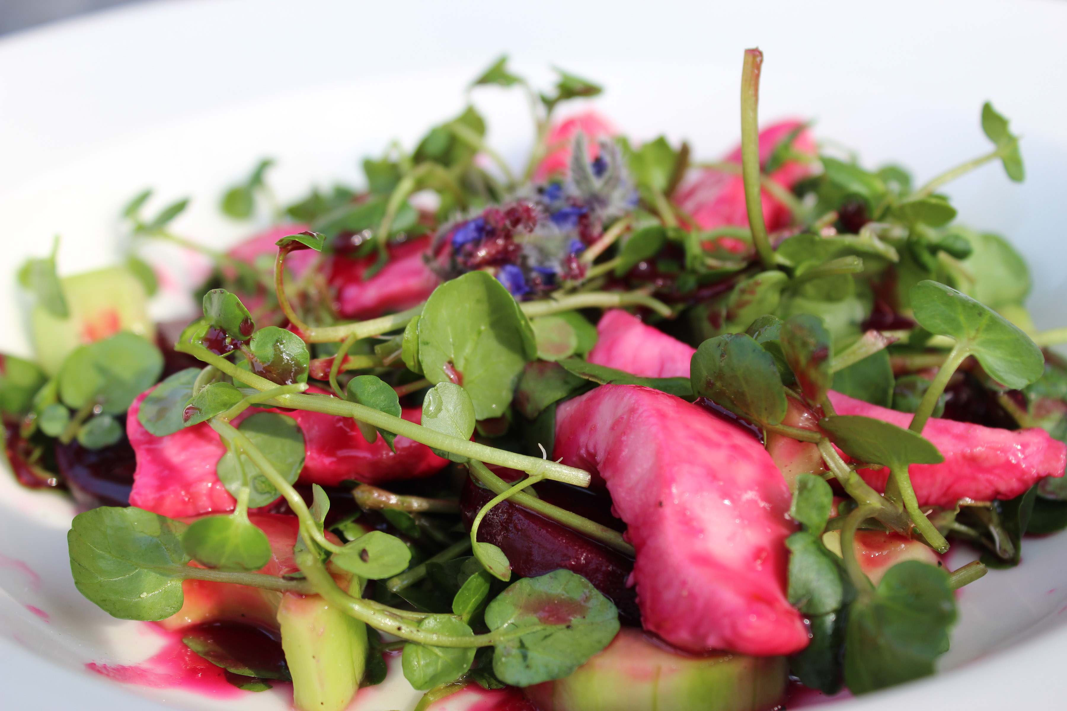 Chicken Watercress Salad